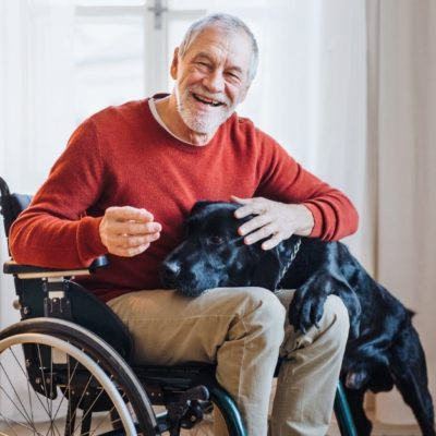 An elderly man sitting in a wheelchair while petting a dog.